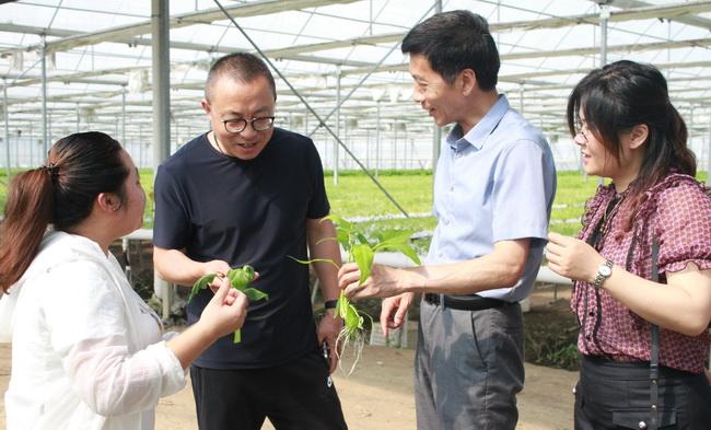 超大 超大农资科技 超大农资科技集团